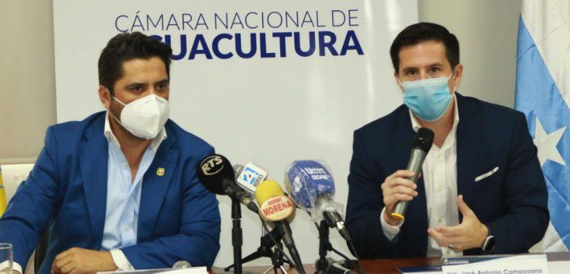 serious-contraction-in-ecuadorian-shrimp-exports