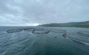 MOWI SALMON FARM SHIFTS POSITION