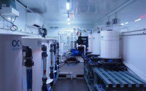 Orkney Shellfish Hatchery announces plans