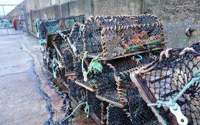 Environmental impacts of creel fishing