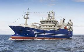 Short Atlanto-Scandian herring season for Icelandic vessels
