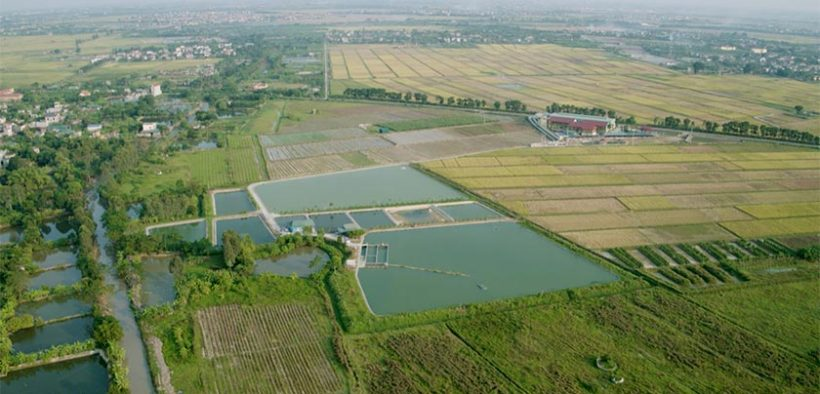 Global Aquaculture Academy expands in-pond raceway system online course