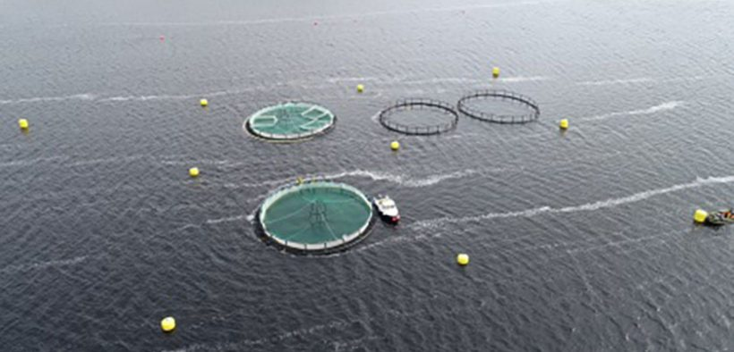 The Marine Institute joins Atlantic collaboration for sustainableaquaculture