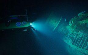 large-predatory-fish-thrive-on-wwll-shipwrecks
