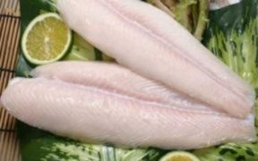 ENCOURAGING SIGNS FOR VIETNAMESE PANGASIUS