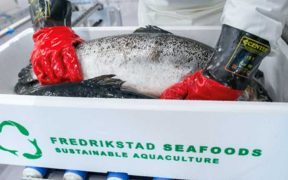 FREDRIKSTAD SEAFOODS AND BIOMAR