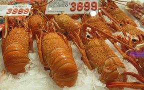 How Covid Hit NZ Seafood Export to China