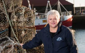 SEAFOOD SECTOR URGENTLY NEEDS RAPID