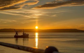 provisional-fishing-quota-to-be-announced