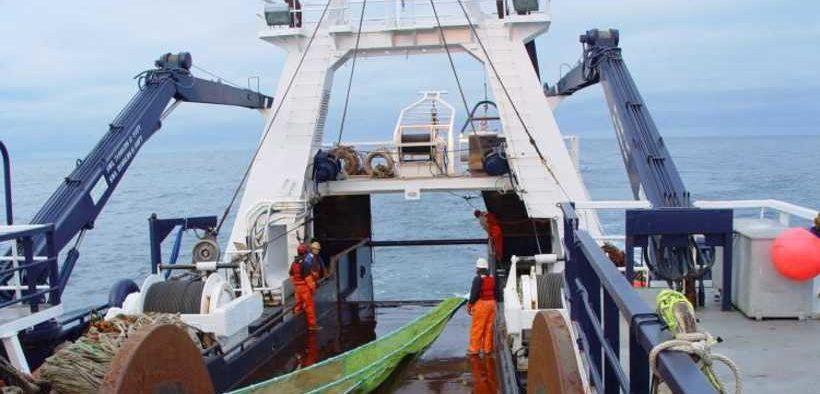 FISH DISTRIBUTION AND ABUNDANCE