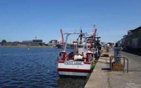 EU FISHERIES CONTROL REVISION