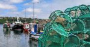IRISH FISHERS WANT ANSWERS