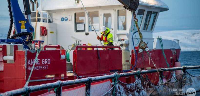NORWAY ROYAL SALMON REPORTS