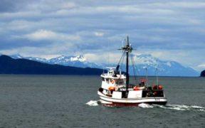 ALASKA LOOKS TO QUANTIFY