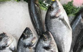 MORRISONS BUYS CORNISH SEAFOOD