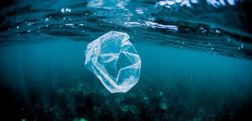 Mayor to Lead Plastic Bottle Battle