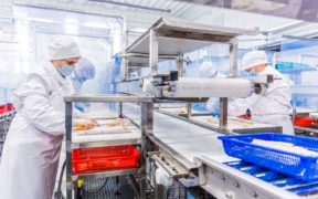 russian-pollock-plant-expands-production