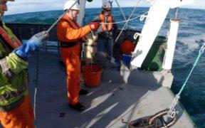 'EUROPE'S LARGEST FISH COUNTER' DEPLOYED