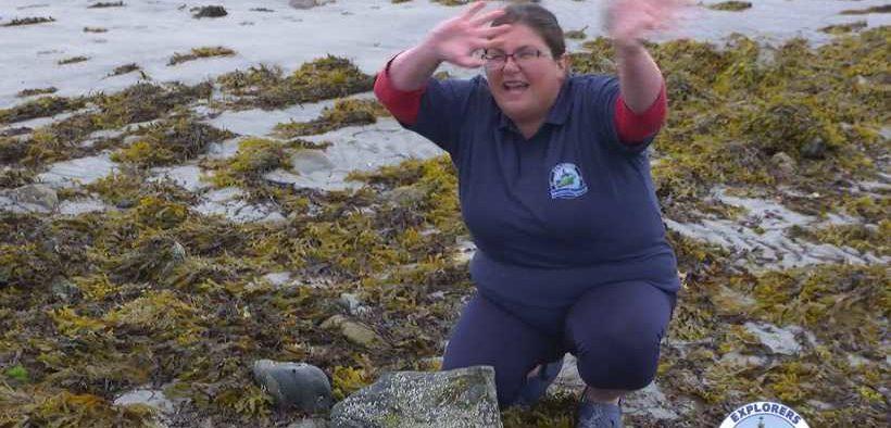 EXPLORERS LAUNCH WILD ABOUT WILDLIFE ON THE SEASHORE 2