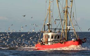 FISHERS CALL FOR PRIORITY ACCESS