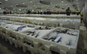 SCOTTISH FISHERMEN'S FEDERATION STATEMENT ON