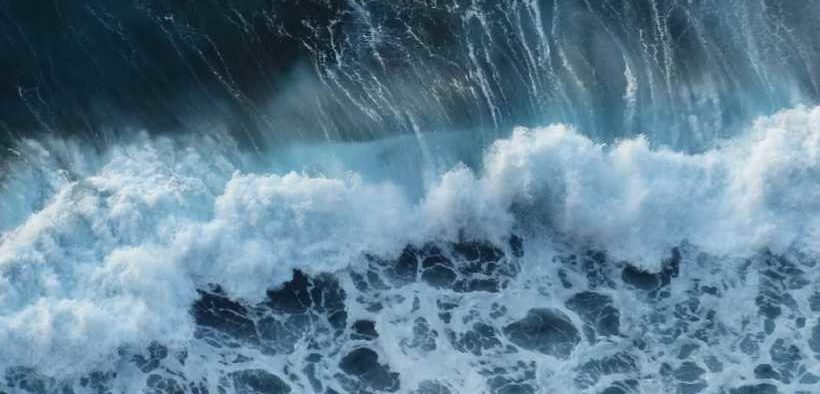 WHAT ROLE FOR OCEANS AND FISHERIES?