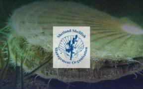 MSC AUDIT SUCCESS FOR SHETLAND
