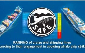 ANALYSIS ON REDUCTION OF WHALE SHIP STRIKES
