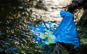 Call for Amazon to reduce plastic to save the oceans