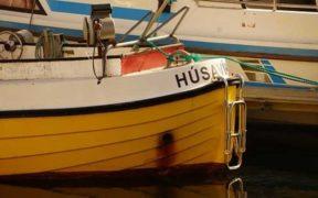 DROP LAST MONTH IN ICELANDIC FISH CATCH