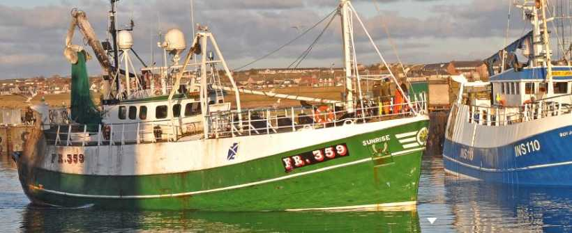 ICES TOTAL ALLOWABLE CATCH RECOMMENDATIONS
