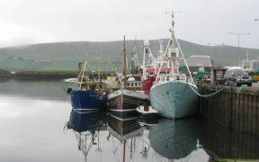 IRISH SEAFOOD TASK FORCE