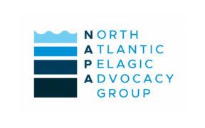 NAPA launches novel 'policy FIP' for NEA pelagics