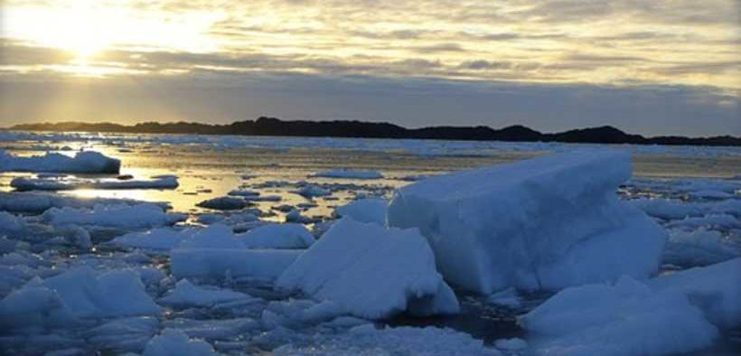 ROYAL GREENLAND RESULTS HIT BY PANDEMIC