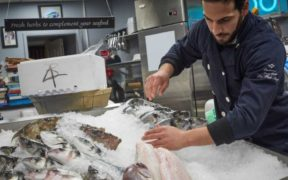 SEAFOOD INDUSTRY SURVEY