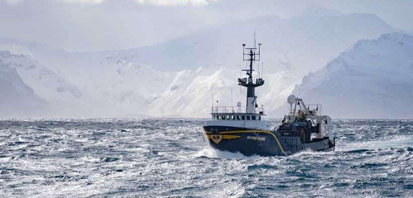 ALASKA POLLOCK – 'ONE OF THE MOST