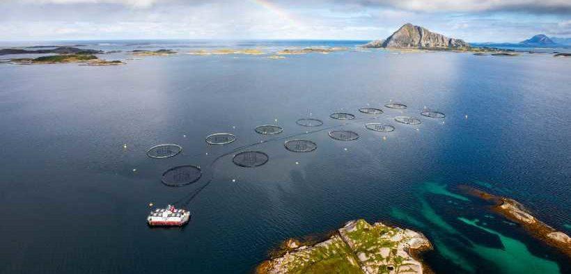 NOVA SEA JOINS NORWEGIAN SEAFOOD TRUST