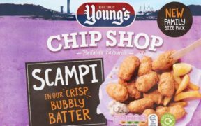 YOUNG'S LAUNCHES