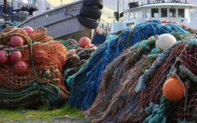 Fishery disaster declarations for four US commercial fisheries