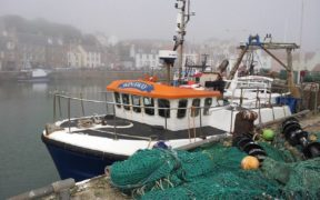 Fishing industry urges PM to help industry build back after Brexit fiasco