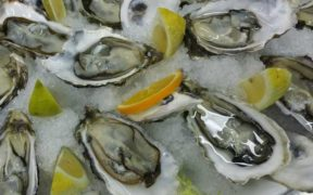 RESILIENCE FUNDING HELPS SCOTS SHELLFISH