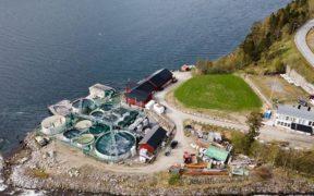 Salmon Evolution acquires Kraft Laks