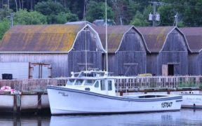 canada-agrees-on-autumn-lobster-fishery
