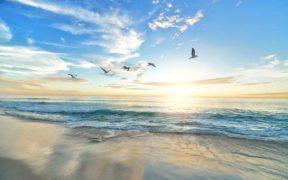 EC LAUNCHES RESTORE OUR OCEANS (1)