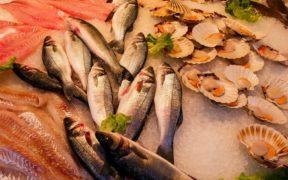EU CONSUMERS STAY LOYAL TO FISH