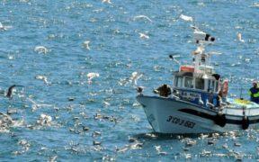 EU FUNDING IN THE FISHERIES