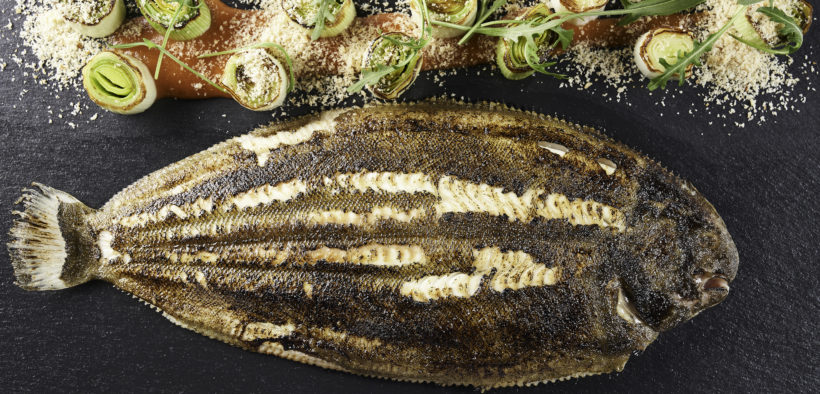 FIRST SOLE HARVEST FOR STOLT SEA FARM