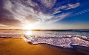Friends of Ocean launches initiative