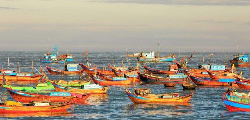 Vietnamese fishery production rises