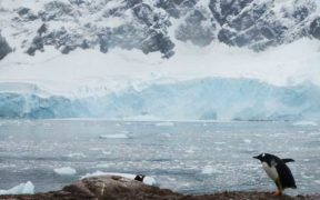 ANTARCTIC MEETING CHANCE TO THAW OPPOSITION (1)